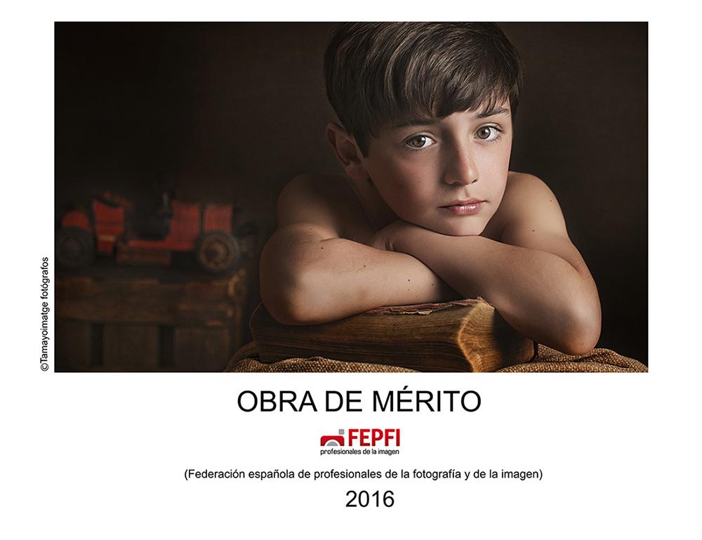 obra-de-merito-2